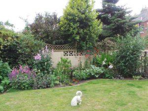 Liss Gardens 3